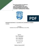 Informe I- Eus Seccion 001