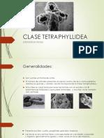 9 TETRAPHYLIDEA - KEVIN RIVERA (5).pdf