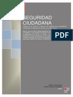 investigacion-seguridadciudadanavillamariadeltriunfo-111112015256-phpapp02 (1).pdf