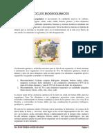 CICLOS_BIOGEOQUIMICOS.pdf