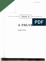Pelve - Gardner, Gray, O'Rahilly - 4ª Ed
