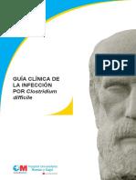 Guía Clínica Icd 25ago 2014