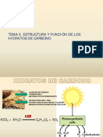 Tema 5 Estructura y Funcion de Los Carbohidratos