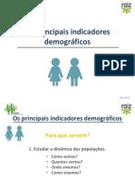 geo8_indicadores_demograficos