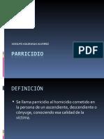 parricidio_aaquinaga