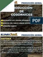 Produccion de Codornices