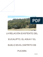Informe de El Eucalipto