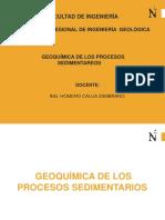 Geoquimica de Los Procesos Sedimentareos