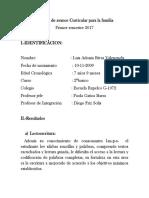 informe vance I semestre PIE