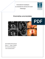 anomalias.docx