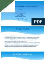 Presentación Ejecutiva Estructura Del Plan de Negocios