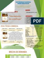 Mermelada de Calabaza Presentación Diapositivas Proyectos (1)