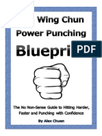 Wing Chun Power Punching Blueprint in PDF format