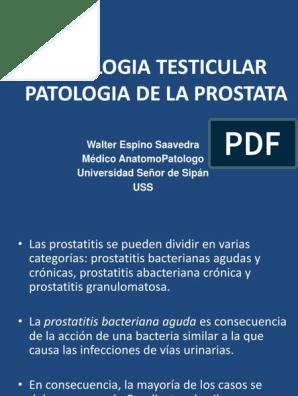 patologia de prostata ppt 2017