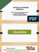 1.-BIOQ-GLUCÓLISIS-Y-GLUCONEOGENESIS (3)