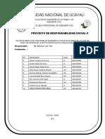 Proyeccion Social II CD