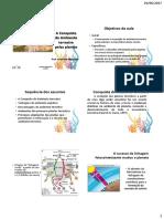 Aula_4_Bot_Sist.pdf