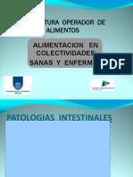 Patologias intestinales