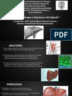 1.1 Fisiologia y Funciones Del Higado