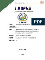 Analisis Informe 5 Imprimir