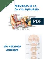 Vías de Nerviosas de La Audición y Equilibrio