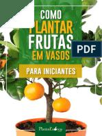 Como Plantar Frutas Em Vaso Iniciantes