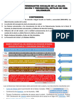Tema Nº 7 II-3-7 Determinantes Sociales Promocion y Prevencion