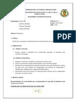 Informe 3.-Identificación de Carotenoides.-2461