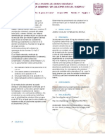 fosfolipidos.docx