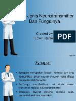 Jenis-Jenis Neurotransmitter