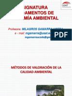 Métodos de Valoración de Calidad Ambiental - Introducción