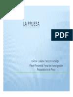 2076_2_la_prueba.pdf