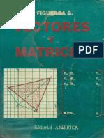 Ricardo Figueroa García-Vectores y Matrices (1993).pdf