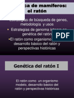 Genética de Mamíferos Raton 1A Slides