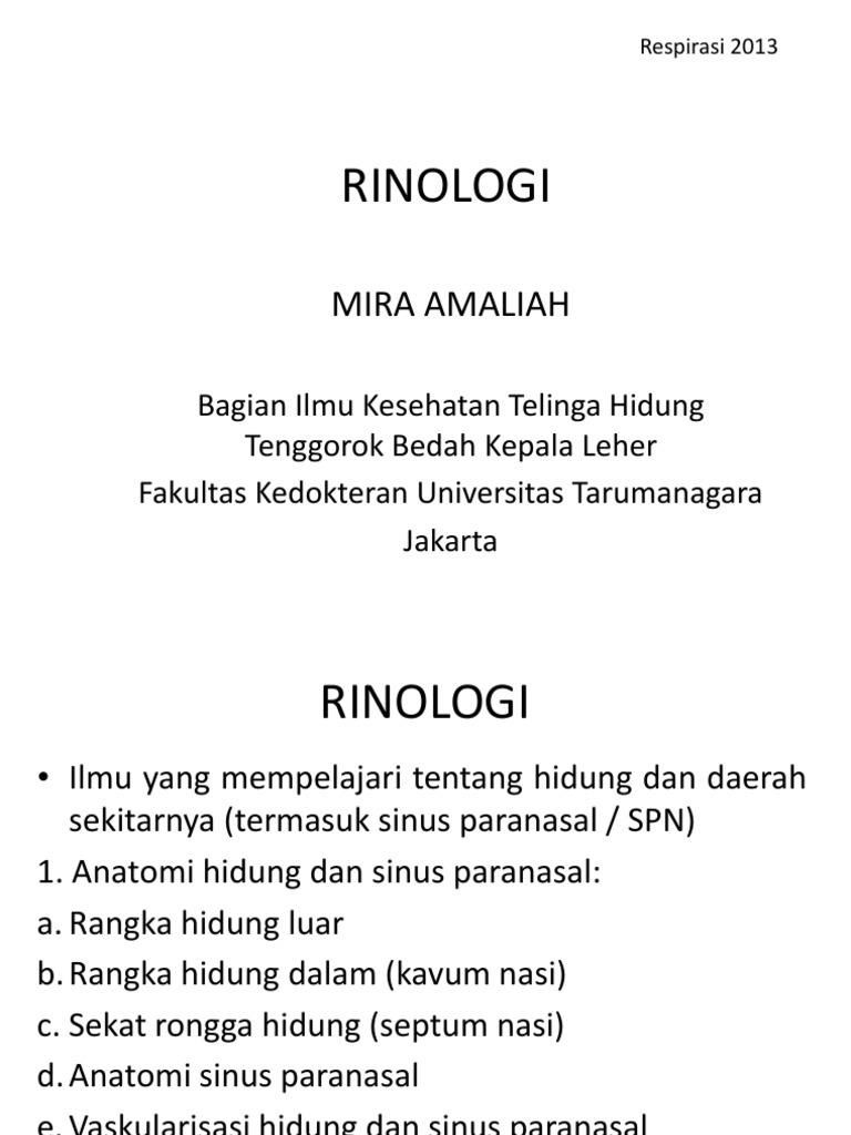 Rinologi 2013