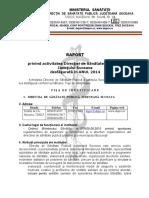2014 - Raport Activitate Final