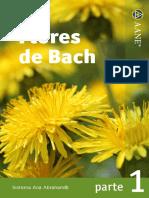 Copia de Flores Bach 1