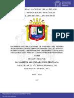 LLanos_Machaca_Maritza_Yolanda.pdf