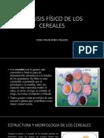 Analisis Fisico de Los Cereales