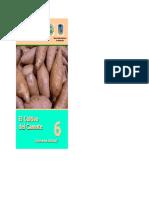 el cultivo de camote.pdf