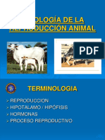 Presentacion Introduccion a La Produccion Animal1