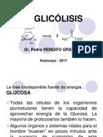Carbohidratos III Vías Metabólicas 2