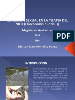 Trabajo Reversion Sexual Tilapia Nilo Ederson Montalico