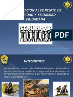 (3) Aproximacion Al Concepto de Seguridad y Seguridad Ciudadana