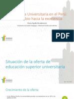 Diagnostico de La Educacion Universitaria 13.07.16