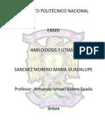 Amiloidosis y Litiasis.