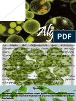 Algas - Samoara