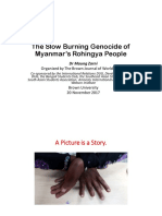 The Slow Burning Genocide of Myanmar Rohingya People