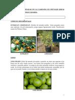 Características de Las Variedades de Los Árboles Frutales 2016