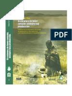 Concepeicón Indígena - Andina de Desarrollo